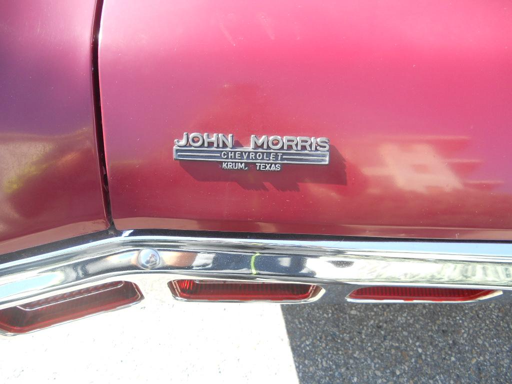 [Immagine: impala%2069%20014.JPG]